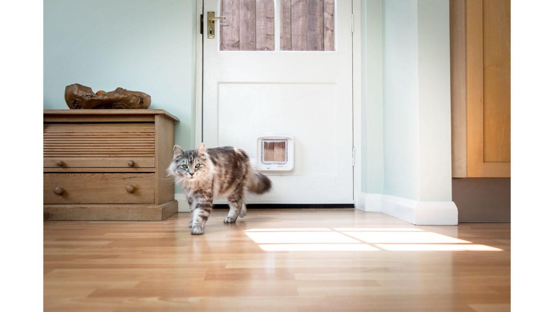 Katzenklappe von SureFlap bei Glas Voit